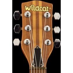 Wildcat JPN Neck true body natural Used good condition