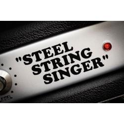 Guitarking Steel String Singer #002 Historic Replica 100Watt Reverb Head