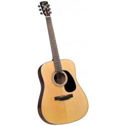 Bristol gitaar folk BD16 (2017)