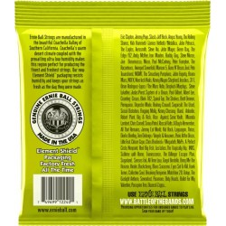 Ernie Ball Regular Slinky RPS Nickel Wound