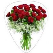 Roses Bouquet plectrum
