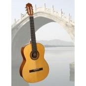 Martinez gitaar klassiek MCG50C