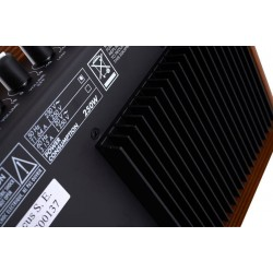 Acus One For Strings 5T Wood / 2 Channels and aux in