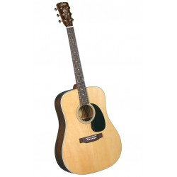 Blueridge gitaar folk BR60 Solid Top Palissander