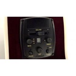 Epiphone EJ-200-COUPE Mini-Jumbo WR