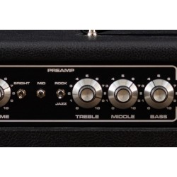Guitarking OD Special Bluesmaster 50 Watt 2 Channel Head