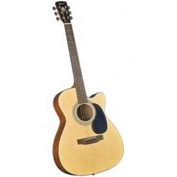 Bristol gitaar folk BM16CE