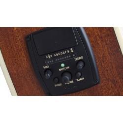 Epiphone AJ-220SCE solid top NA