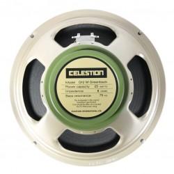 Palmer 112 Celestion Greenback 8ohm