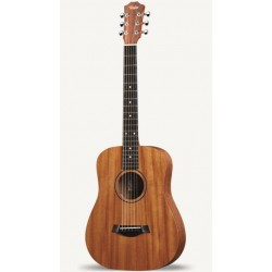 Taylor BT2 Mahogany including gigbag