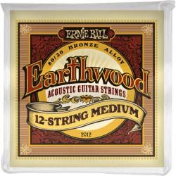Ernie Ball Earthwood Bronze 80/20 12string